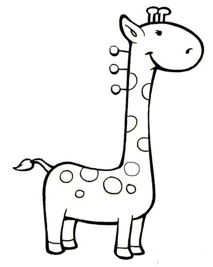 幼儿简笔画图片大全:卡通小动物简笔画大全